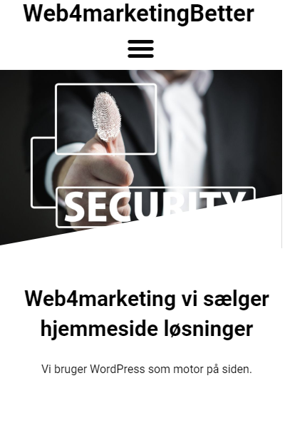 web4marketing WordPress hjemmesider